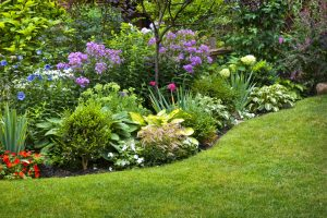 Quick Gardening Tips to Save You Money https://landscaping-philadelphia.com