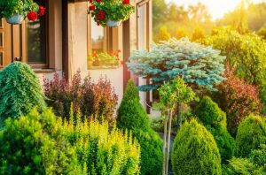 Cheap Landscaping Ideas Chicago  landscaper