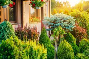 Cheap Landscaping Ideas Chicago landscaper